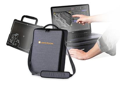 Light-weight X-ray bag with detector & notebook