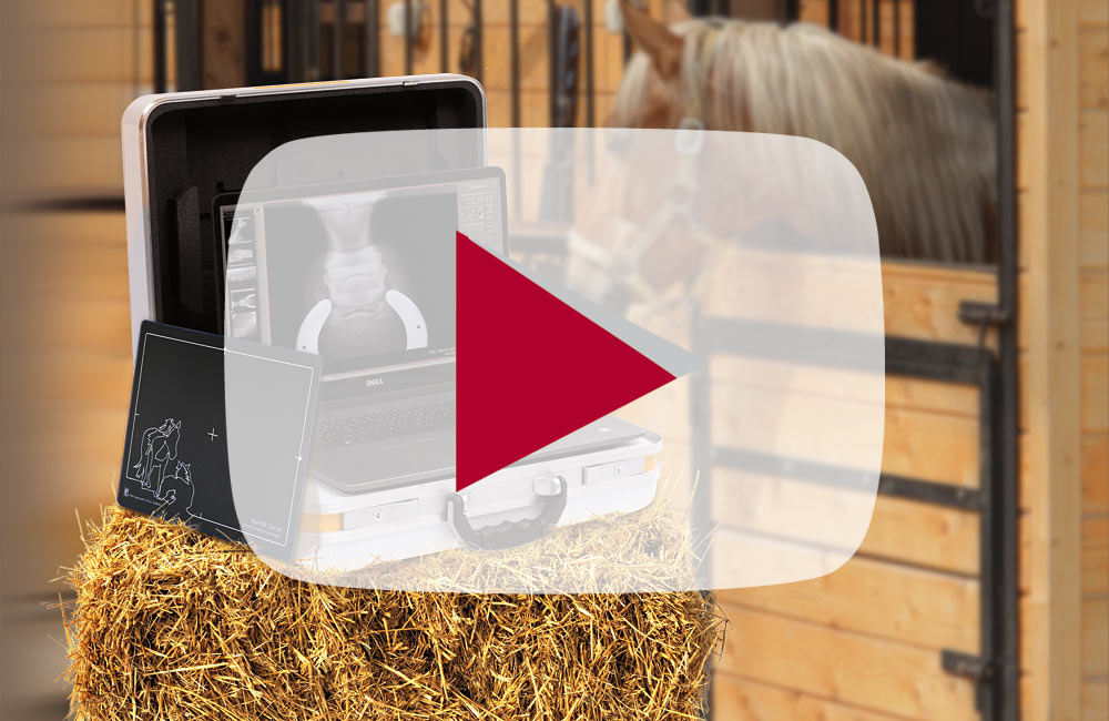 Product video: The compact suitcase solution for radiography in stables, clinics and hospitals