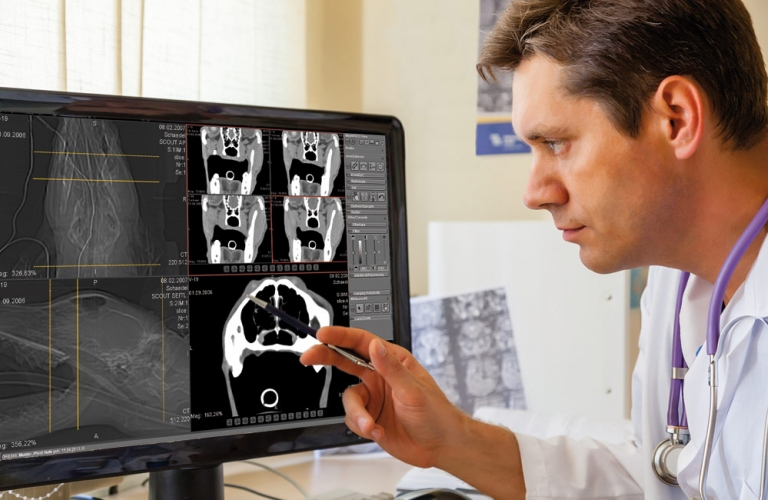 X-ray images and documents can be shared via cloud to obtain a second opinion.