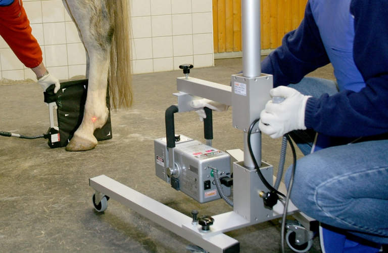 Veterinary-Medicine-Mobile-stands-wall-mounts-and-cassette-holders-1